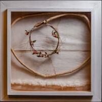 Elizethe Borghetti - Coeur coragem - imagem reprodução